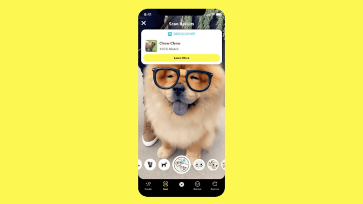 Snapchat Scan köpek cinsi ve bitki türlerini tespit edecek