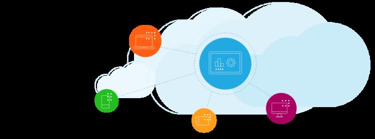 Citrix Web App and API Protection