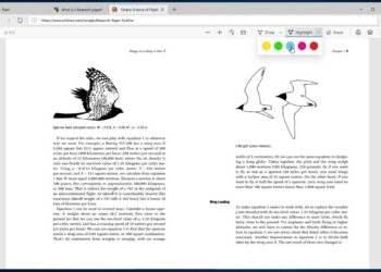Microsoft Edge ile PDF'lere açıklama ekleme özelliği geliyor