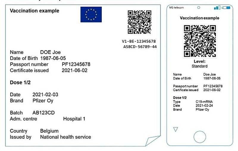 Mobil aşı pasaportu: Avrupa Birliği seyahati kolaylaştırmayı nasıl planlıyor?