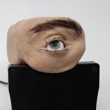 Bu web kamerası bir insan gözüne benziyor: Nasıl çalışıyor?