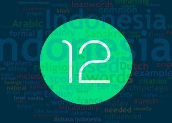 Android 12, uygulamaların otomatik olarak cihaz diline çevrilmesini sağlayacak