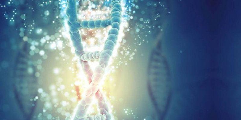Harvard, CRISPR ile rekabet edecek bir gen düzenleme aracı yaratıyor