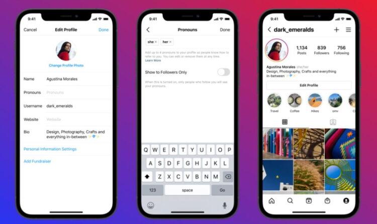 Instagram, kullanıcıların profillerine zamir eklemelerine izin verecek