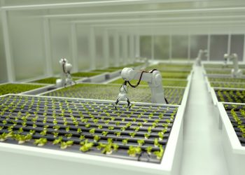 Gıdanın geleceğini şekillendirecek Foodtech için 10 dönüm noktası