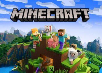 Minecraft RAM verme