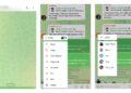 Telegram 8.0.1 ile okundu iletisi geliyor