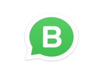 WhatsApp Business'dan alışverişi kolaylaştıran yeni özellik: Koleksiyonlar